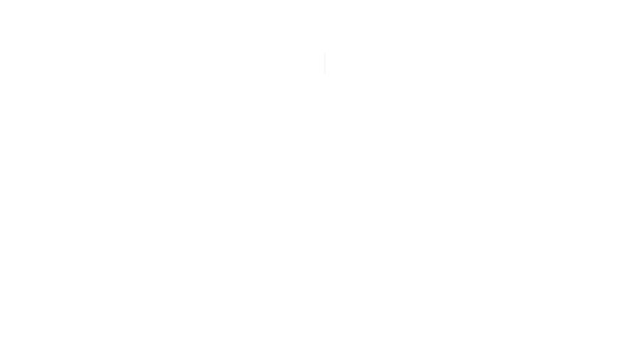 Logo Footer- KRZ Productions Ottawa Lebanese DJ